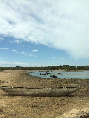 Cinnamon Wild Yala : Road and lake to Cinnamon Yala