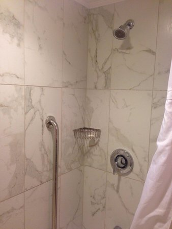 Castle Hotel, Autograph Collection : TINY shower head