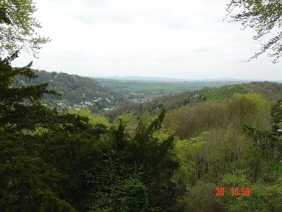 Royal Forest of Dean: View over the valley - nice walking area