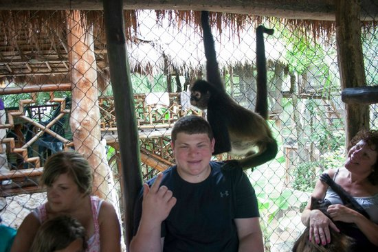 "The Jungle Place - Tours: ""Mom, I have a monkey on my head!"""