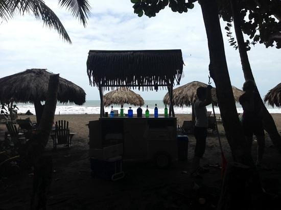Hotel Banana Azul : a beach with a bar...