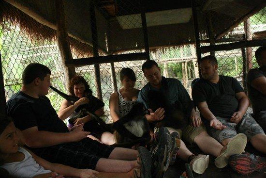The Jungle Place - Tours: Family bonding