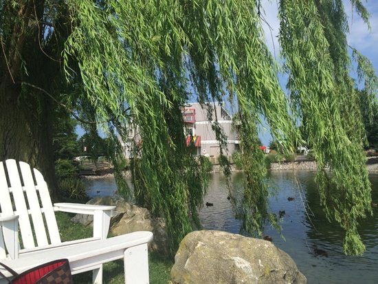Fulton Steamboat Inn: View from the sitting area in the pond