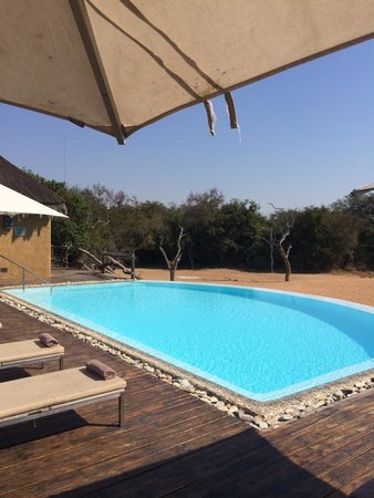Kapama River Lodge: Spakling pool