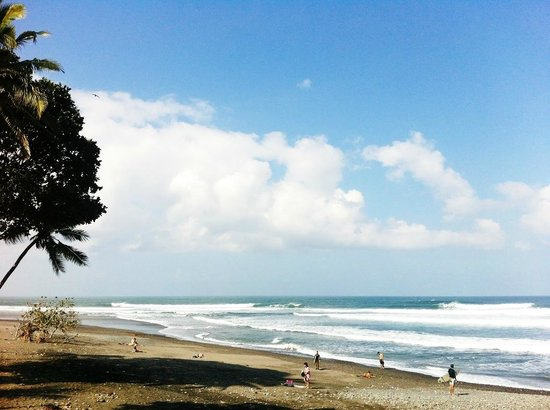 Pondok Pitaya: Hotel, Surfing and Yoga : Balian Beach lies right in front of the hotel