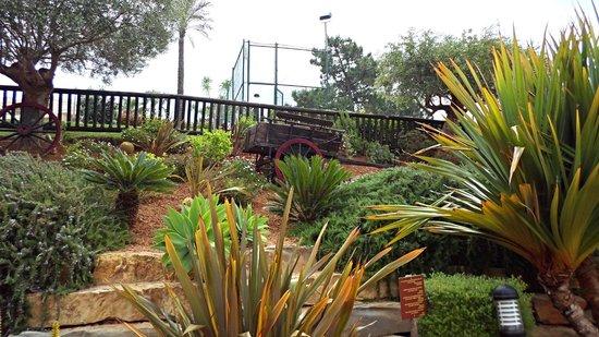 ClubHotel Riu Guarana : hotel gardens