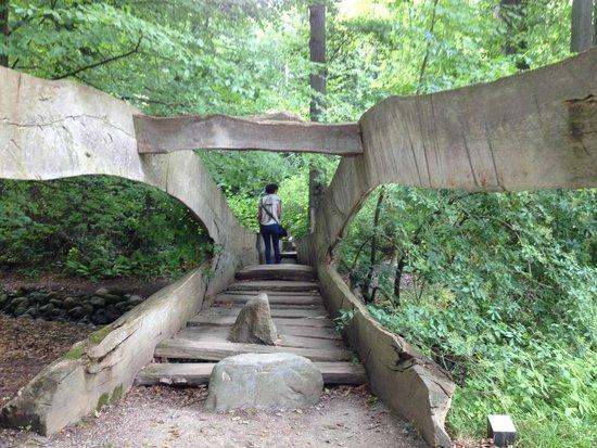 Musée d'art moderne Louisiana : A tree bridge along the nature walk