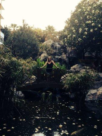 Catalonia Punta del Rey: Stunning gardens