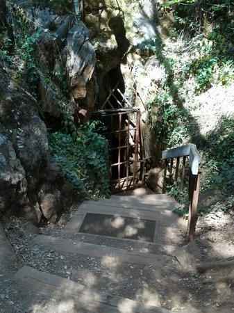 Black Chasm Cavern : Cave entrance
