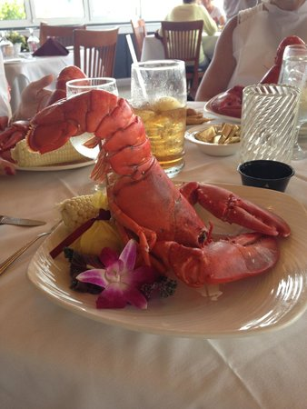 Annie's Paramount Steak and Seafood House: the lobster!