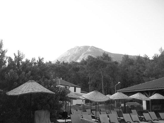 Telmessos Hotel: View