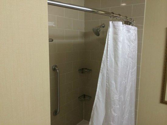 Sheraton Agoura Hills Hotel : Shower