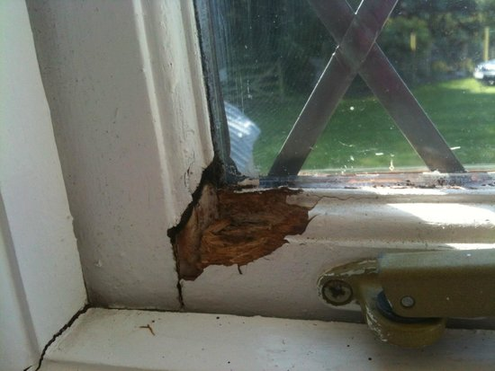 Trimstone Manor Country House Hotel : rotten dirty window frames