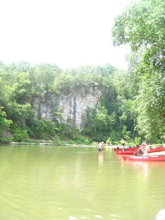 Narrows of the Harpeth : Huge cliff!