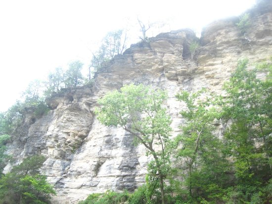 Narrows of the Harpeth : Cliff