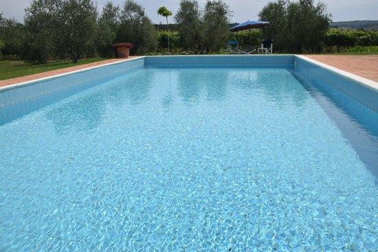 Agriturismo B&B Girasole Terzuolo: la vasca della piscina