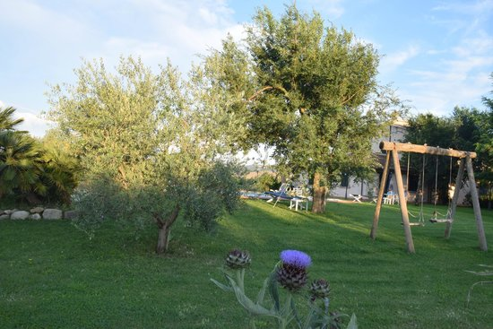 Agriturismo B&B Girasole Terzuolo: altalena nel giardino tra gli olivi