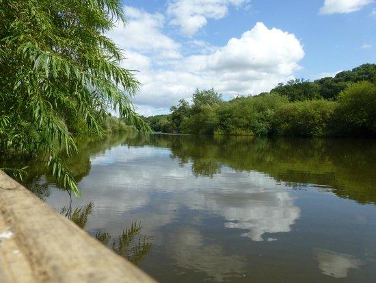 The Ship Inn: River Severn