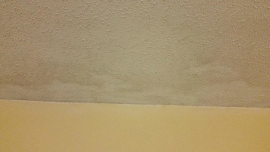 Compass Cove Oceanfront Resort: Stains on ceiling