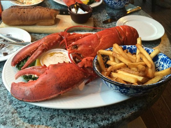 Union River Lobster Pot : THIS is why we came!