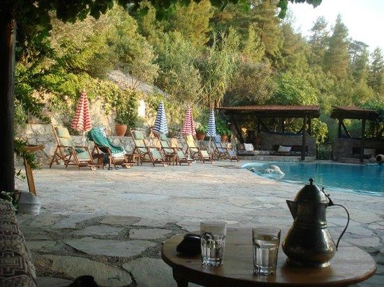 Native Hotel: The poolside