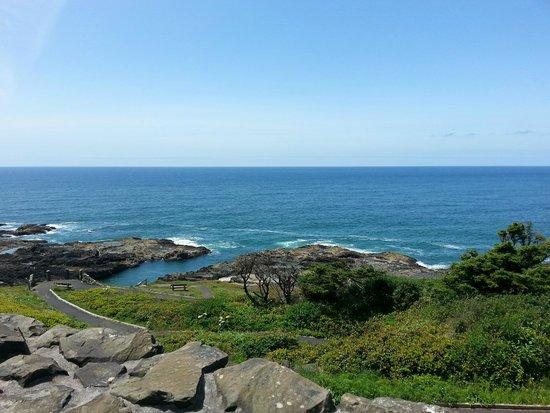 Cape Perpetua Scenic Area: The coast!