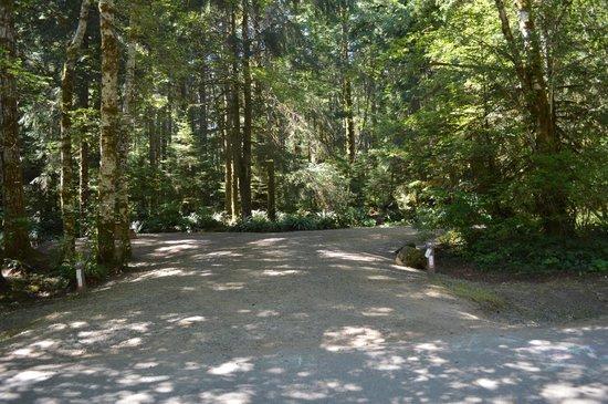 Miracle Beach Provincial Park: Double Campsite
