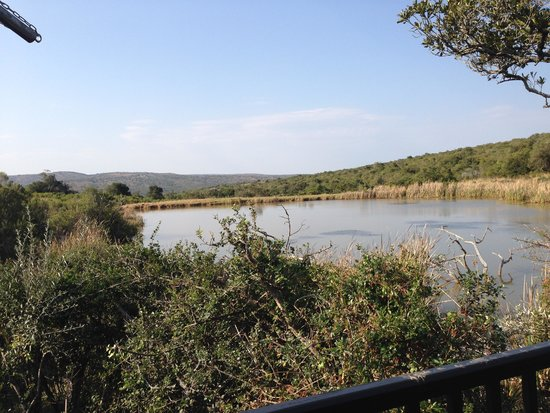 Kichaka Luxury Game Lodge: view from the private deck