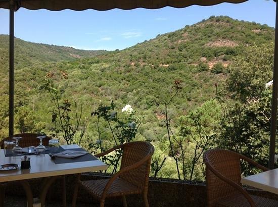 Hotel Eden Park : vue sur le maquis du restaurant