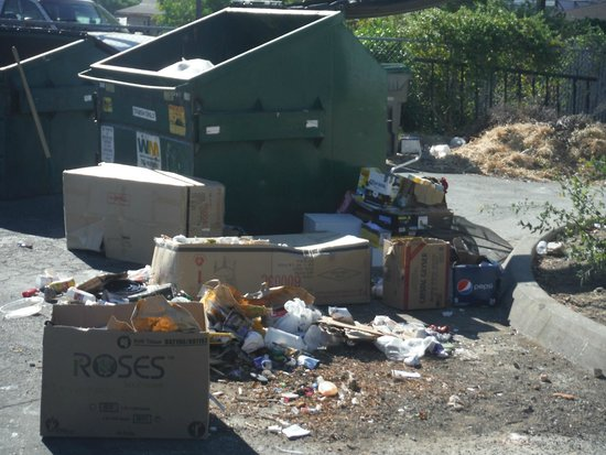Discovery Inn Ukiah, CA: The dumpsters were overfull and this is after trash pickup and it stunk