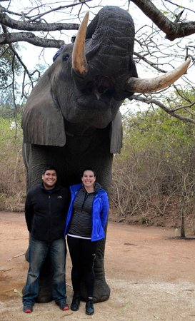 Elephant Whispers: posing with the elephants