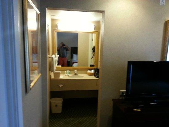 Comfort Suites Oakbrook Terrace: BATHROOM