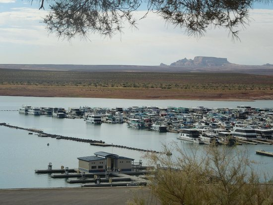 "Lake Powell Resort : La ""marina"" devant l'hotel"