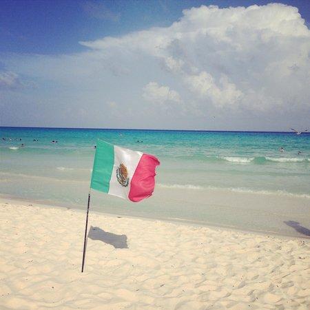 Allegro Playacar : Mexico trip