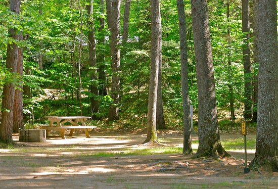 Chocorua Camping Village: Campground- Water and Electic - Tent Site or Pop-up/Small RV