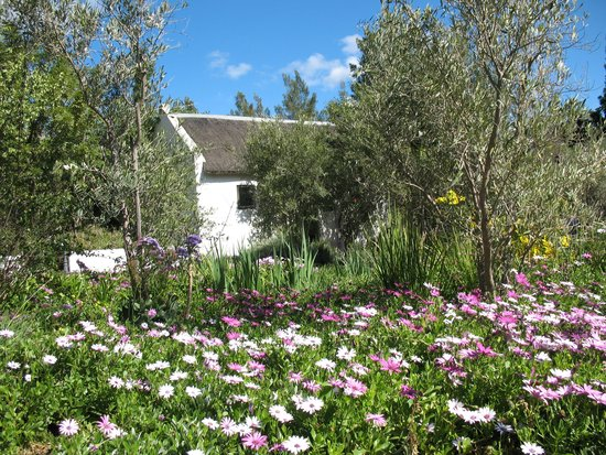 Temenos: Each cottage is an oasis