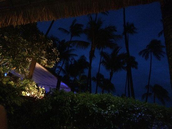 Four Seasons Resort Koh Samui Thailand : Night view of the palm trees from the bar