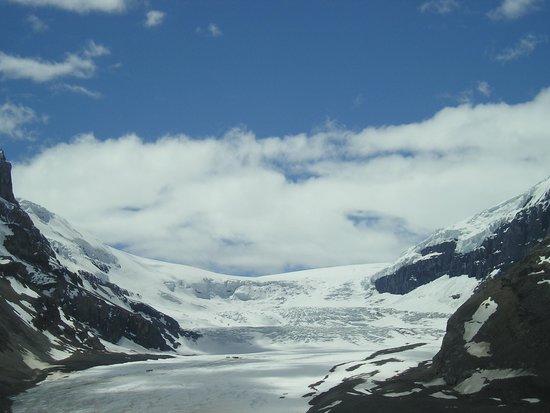 Sawridge Inn and Conference Centre Jasper: Glacier at the Ice Fields