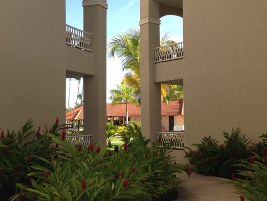 Melia Coco Beach: View of Red Level Pool Area