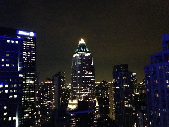 Courtyard by Marriott New York Manhattan/Central Park: View from the room, sleep with the drapes open its amazing!