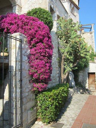 Vieux Eze: een kleurrijk straatje