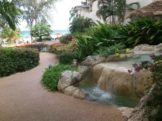 Bougainvillea Beach Resort: First view from reception