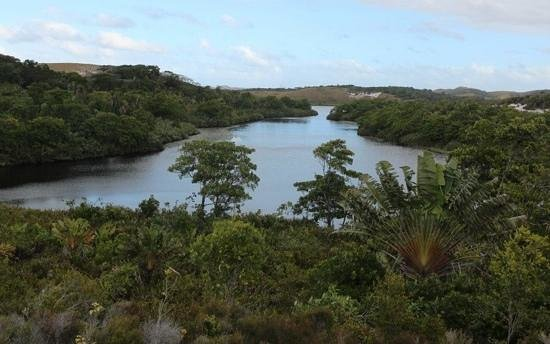 Manafiafy Beach & Rainforest Lodge : Nearby river