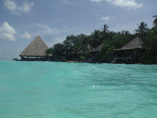 Gangehi Island Resort : Bar and beach villa's 15-17