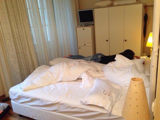 Hotel des Balances: 25m2 room