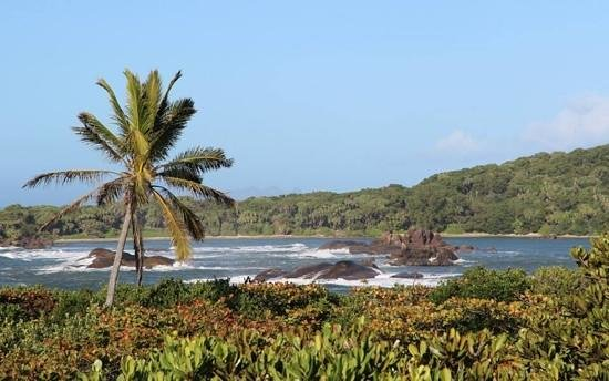 Manafiafy Beach & Rainforest Lodge : View across the bay
