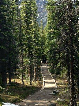 Moraine Lake: Consolation Lake Trail