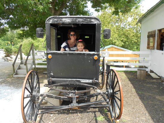 Amish Farm and House : How roomy is an Amish buggy?