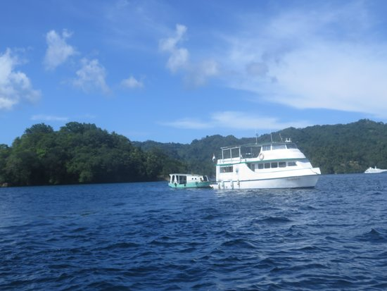 Eco Divers Resort Lembeh: Our Home Away From Home