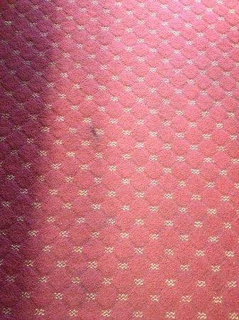 Sirata Beach Resort : carpet in room